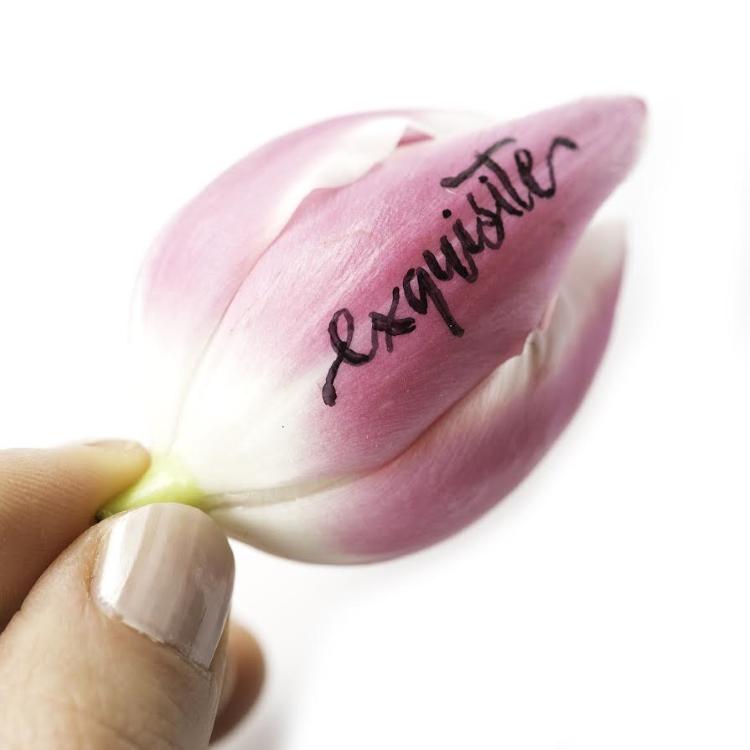 exquisite - Handlettering auf einer Blumenblüte