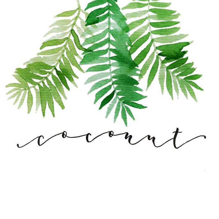 coconut - Lettering mit Palmenblättern in Aquarell