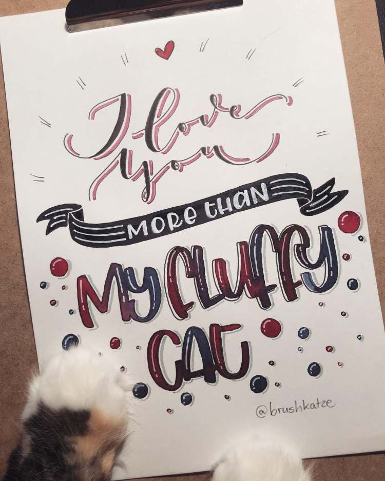Handlettering: I love you more than my fluffy cat