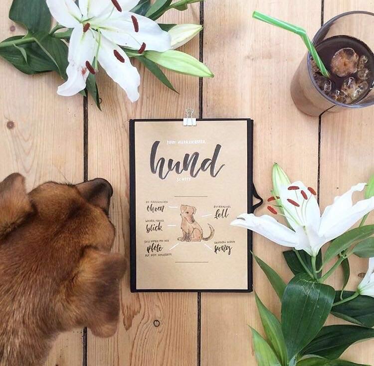 hund - handlettering mit Bild