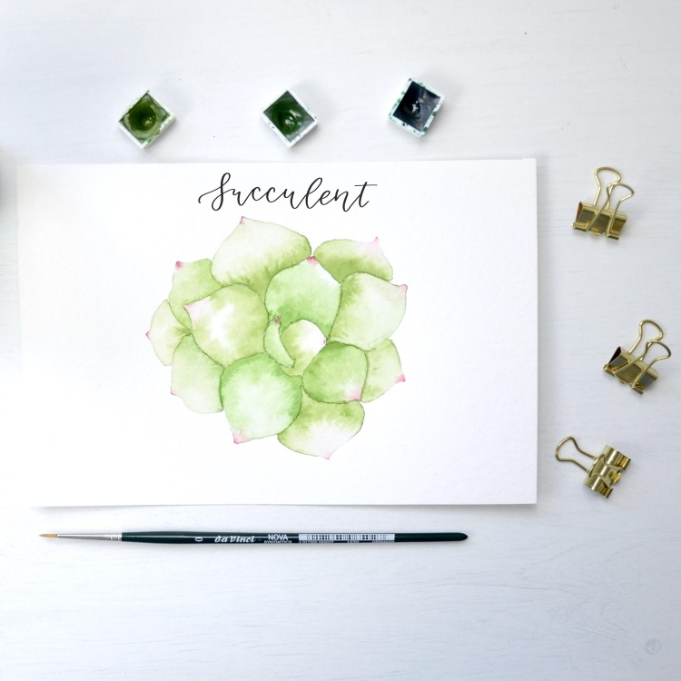Handlettering mit Watercolor Sukkulente