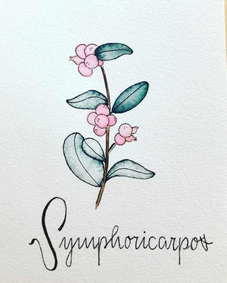 Lettering mit Watercolor Blumen