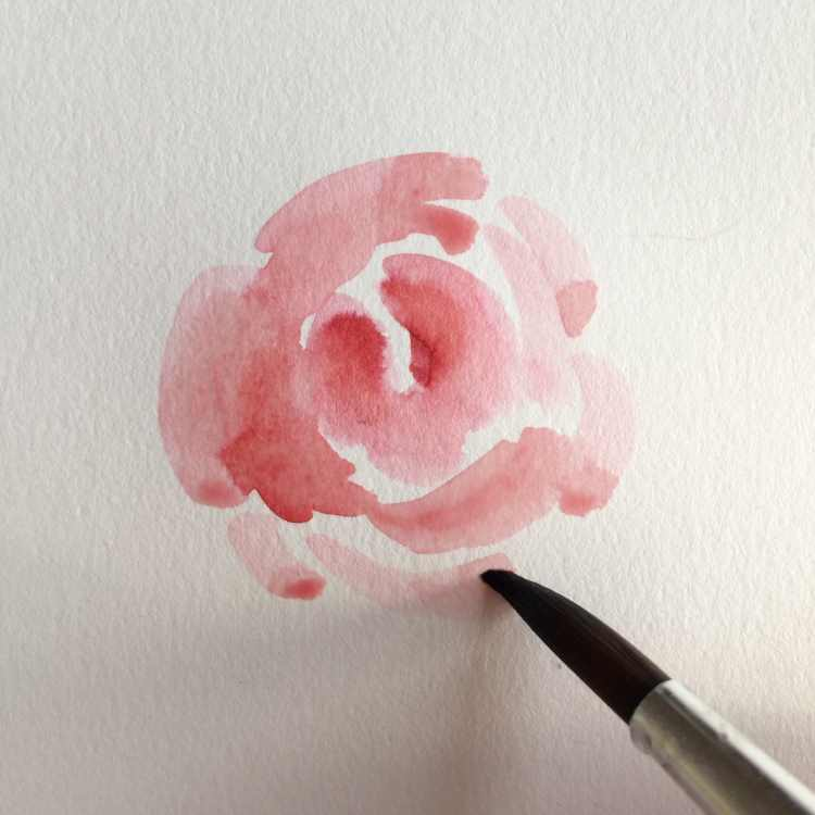 unfertige Rose gemalt