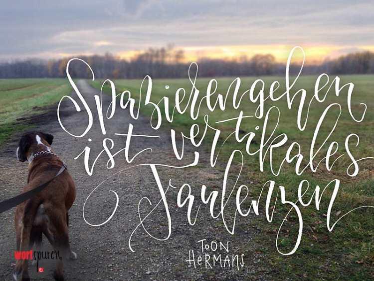 Handlettering auf einem Foto mit einem Hund und Sonnenuntergang