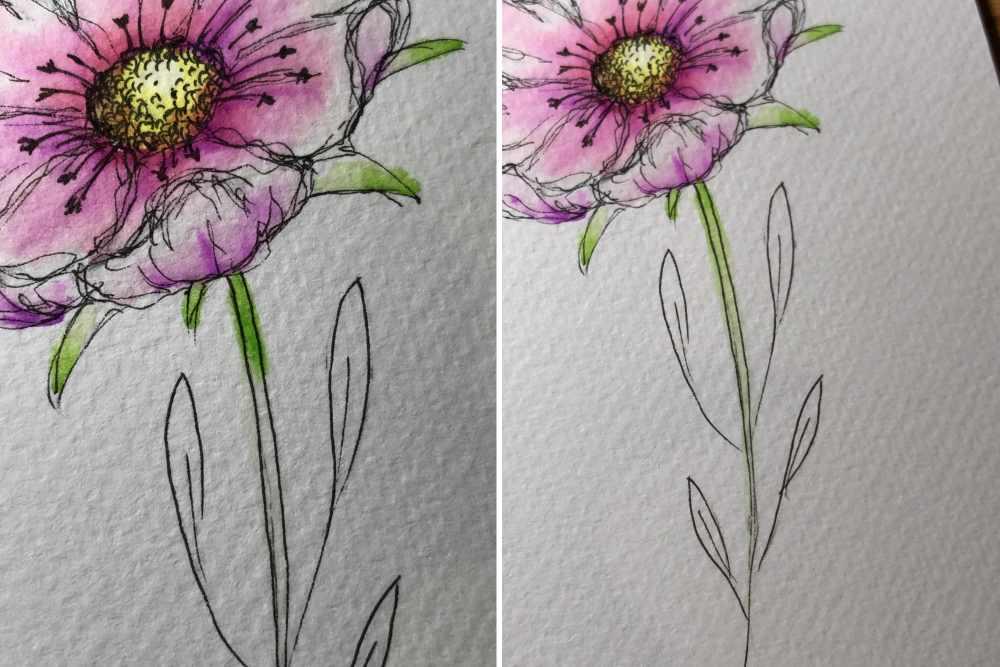 Blumen mit Farben kolorieren