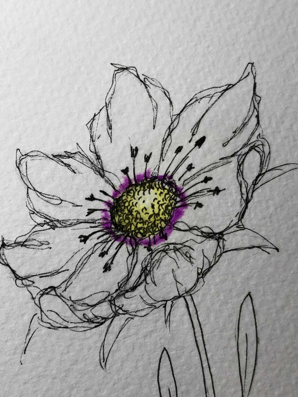 einfaches Ausmalen einer Blumenblüte