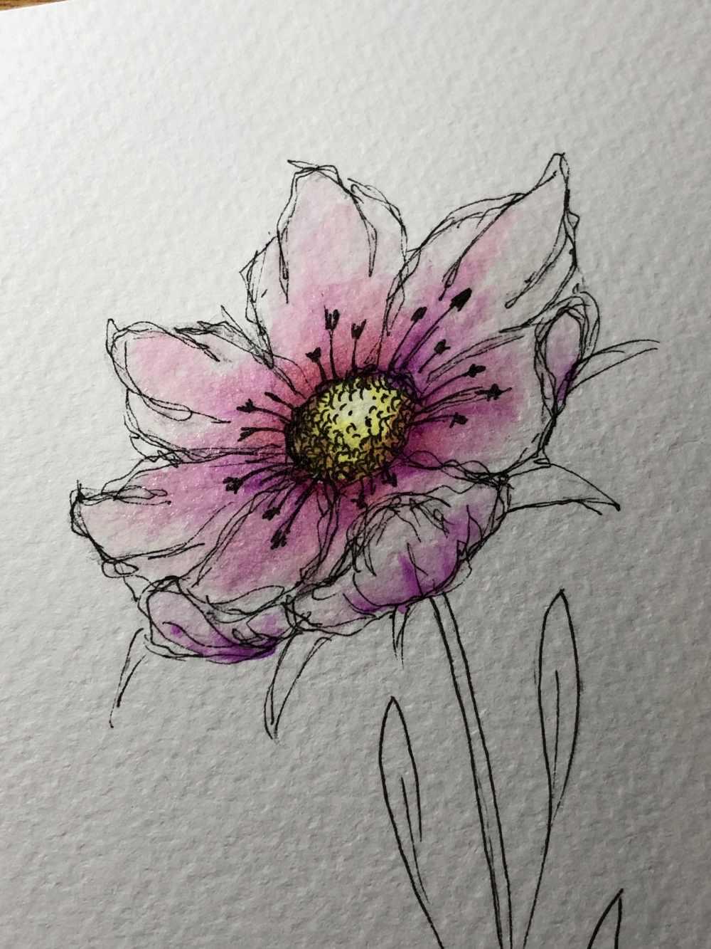Blumenblüte mit der Ellipsentechnik gezeichnet und mit Farben ausgemalt