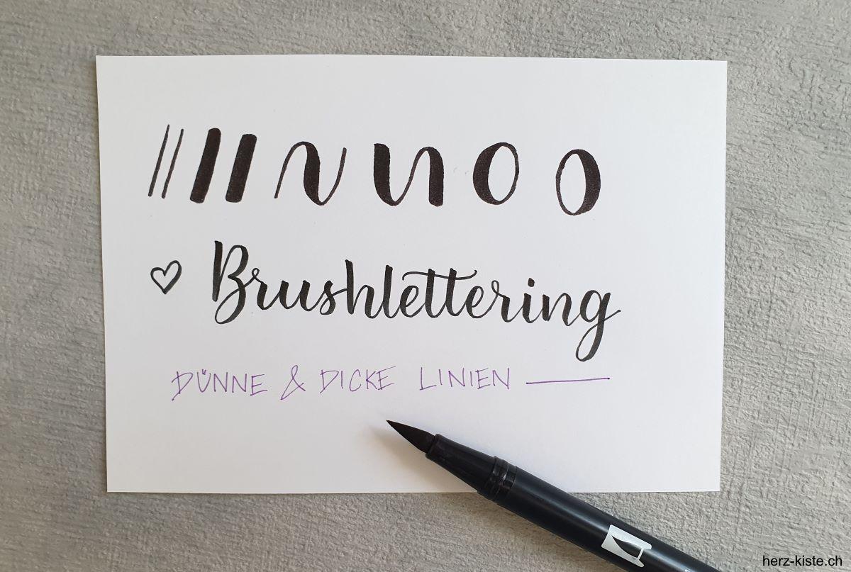 Brush Lettering die Kunst der schönen Schrift mit dünnen und dicken Linien